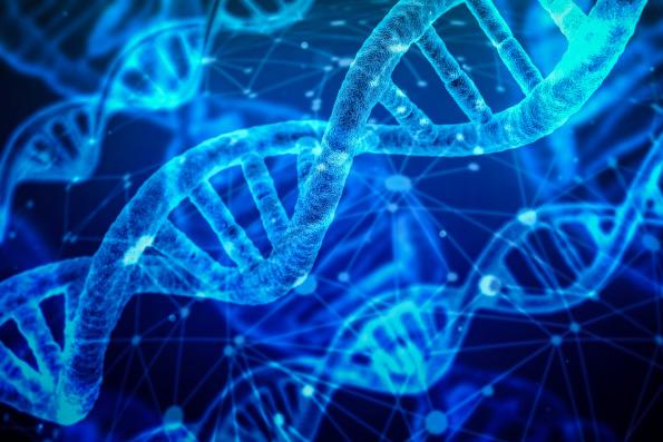 В Русской Церкви указали на потенциальную угрозу генетических паспортов