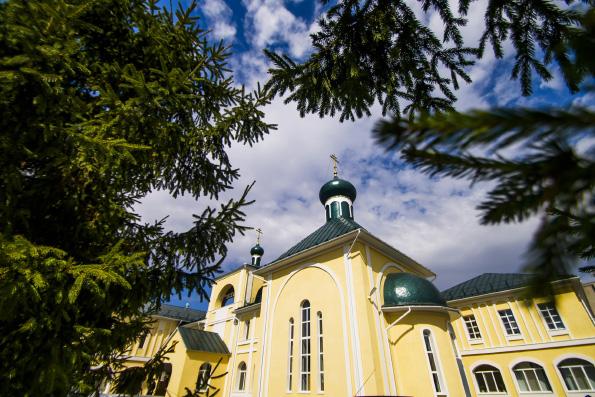 Высшие духовные учебные заведения Русской Православной Церкви переходят на дистанционное обучение