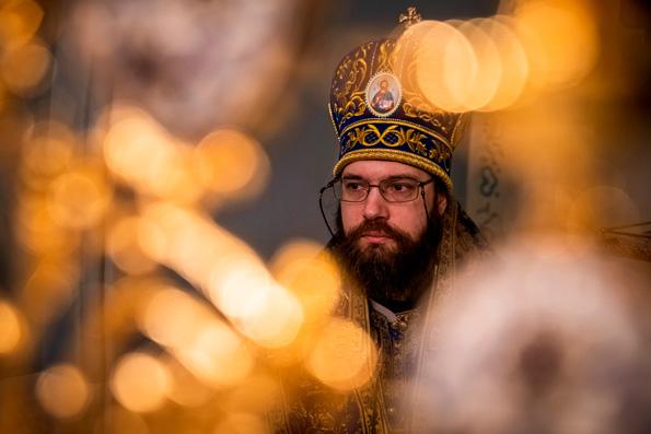 Русская Православная Церковь может пересмотреть отношение к ЭКО